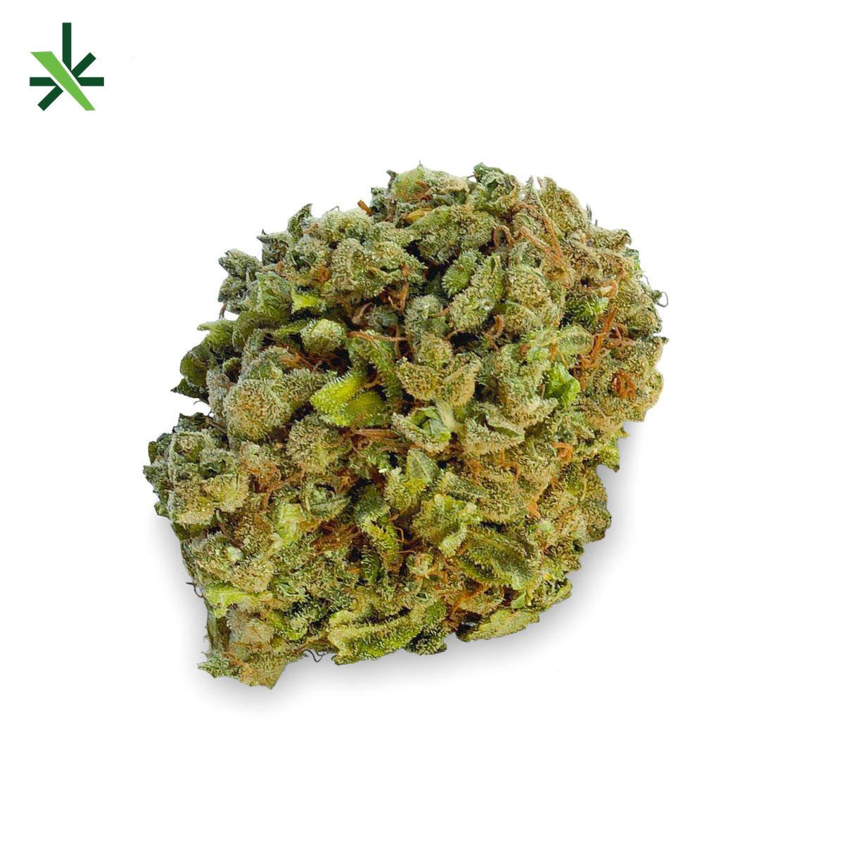 Buddha Cannabis Light Canape